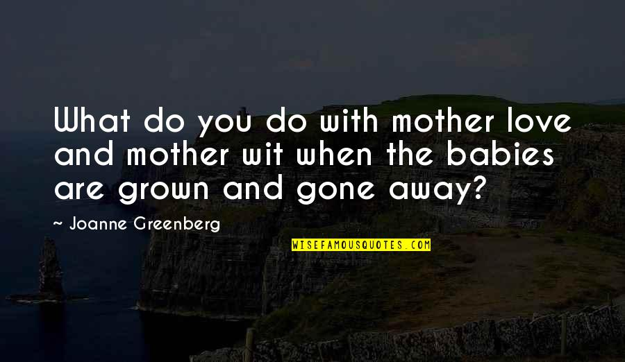 John Mack Quotes By Joanne Greenberg: What do you do with mother love and