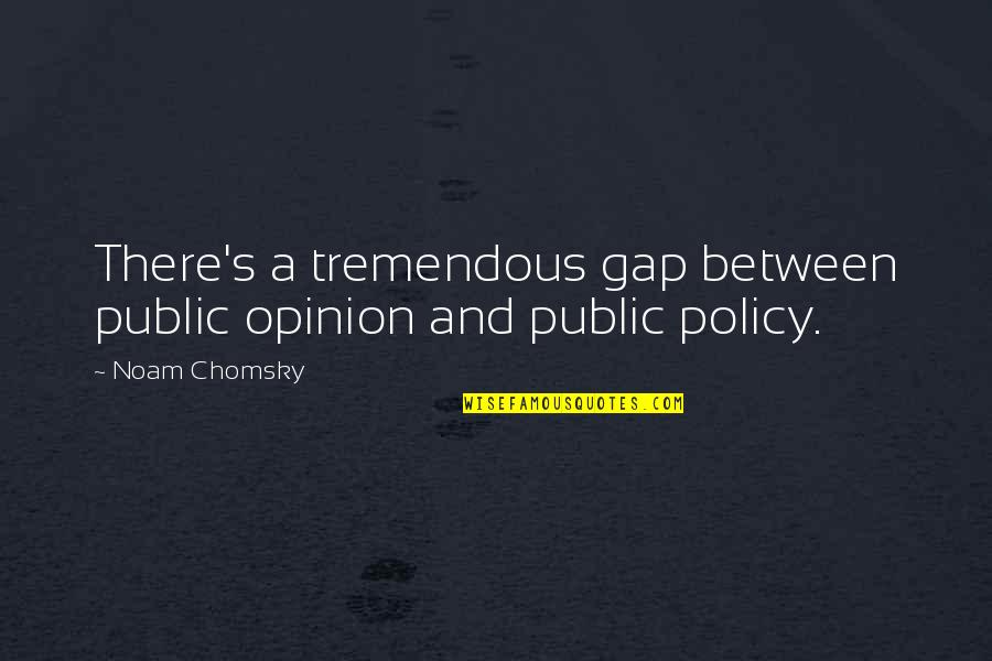 John Neumann Quotes By Noam Chomsky: There's a tremendous gap between public opinion and