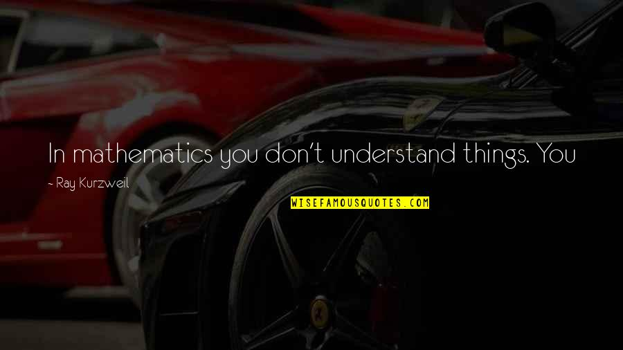 John Neumann Quotes By Ray Kurzweil: In mathematics you don't understand things. You just