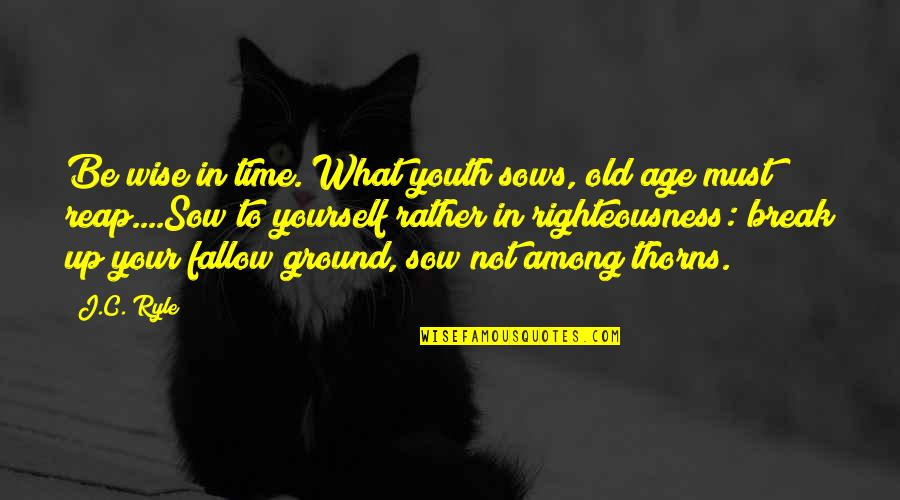 John Nevius Quotes By J.C. Ryle: Be wise in time. What youth sows, old