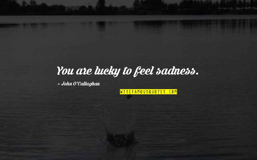 John O Callaghan Quotes By John O'Callaghan: You are lucky to feel sadness.
