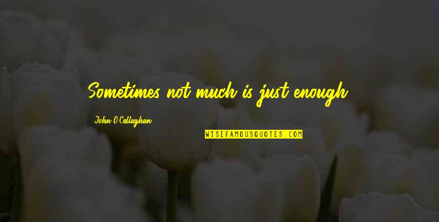 John O Callaghan Quotes By John O'Callaghan: Sometimes not much is just enough.