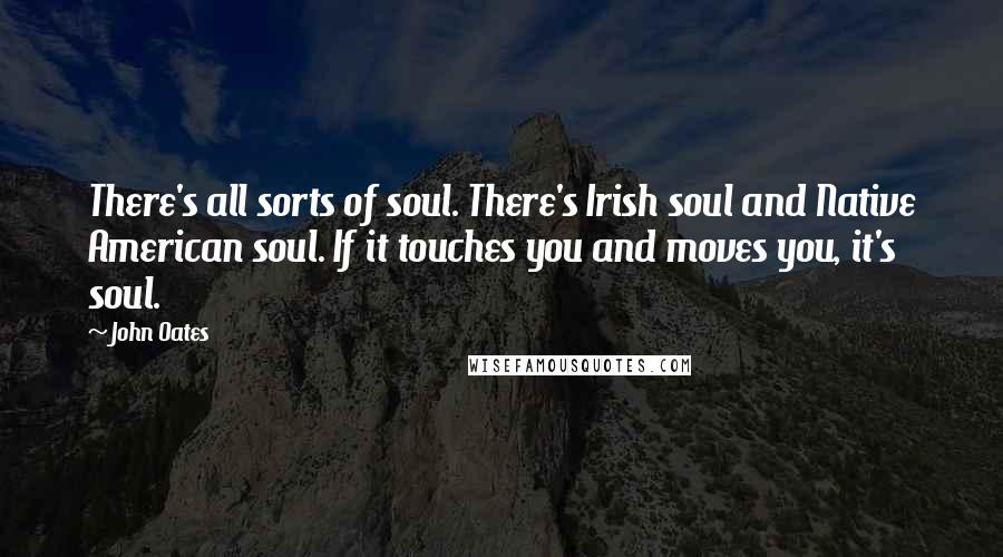 John Oates quotes: There's all sorts of soul. There's Irish soul and Native American soul. If it touches you and moves you, it's soul.