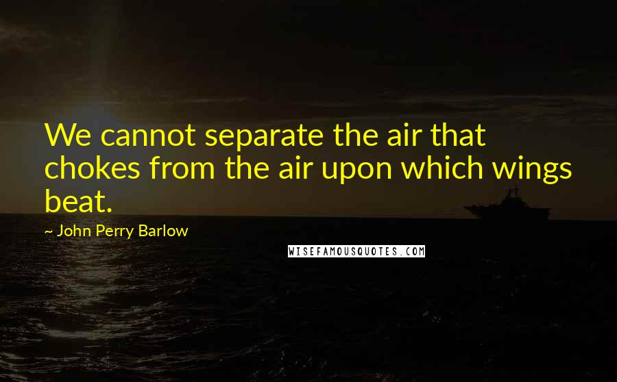John Perry Barlow quotes: We cannot separate the air that chokes from the air upon which wings beat.