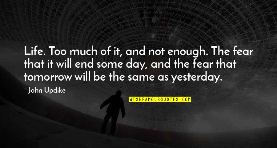 John Priestley Quotes By John Updike: Life. Too much of it, and not enough.