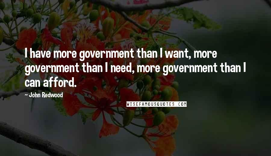 John Redwood quotes: I have more government than I want, more government than I need, more government than I can afford.