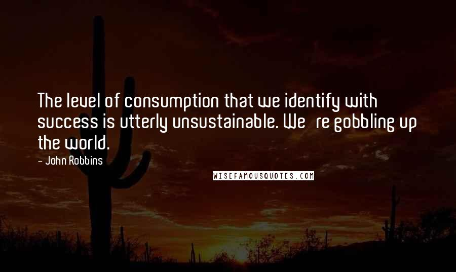 John Robbins quotes: The level of consumption that we identify with success is utterly unsustainable. We're gobbling up the world.