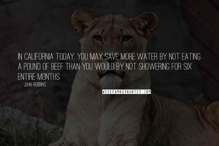 John Robbins quotes: In California today, you may save more water by not eating a pound of beef than you would by not showering for six entire months.