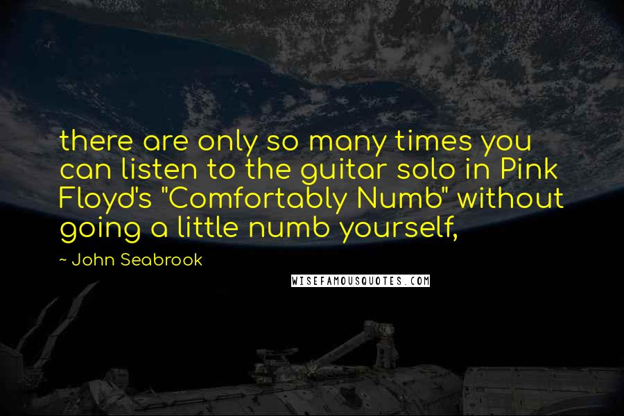 "John Seabrook quotes: there are only so many times you can listen to the guitar solo in Pink Floyd's ""Comfortably Numb"" without going a little numb yourself,"