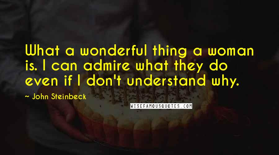 John Steinbeck quotes: What a wonderful thing a woman is. I can admire what they do even if I don't understand why.