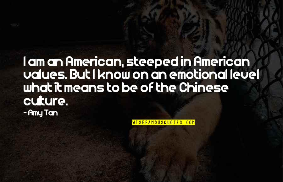 Johnny Flynn Quotes By Amy Tan: I am an American, steeped in American values.