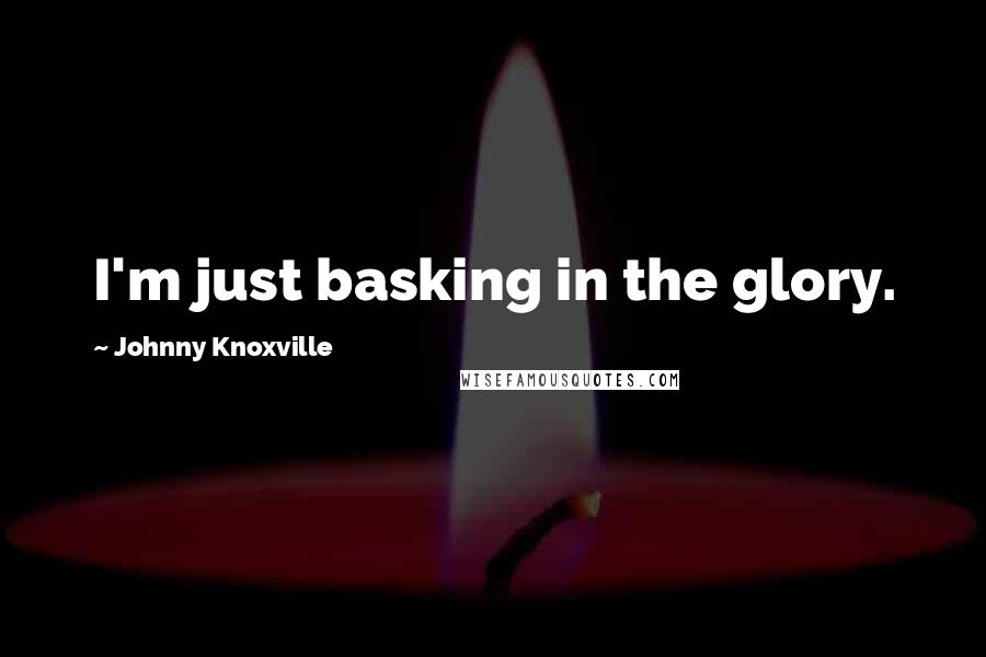 Johnny Knoxville quotes: I'm just basking in the glory.
