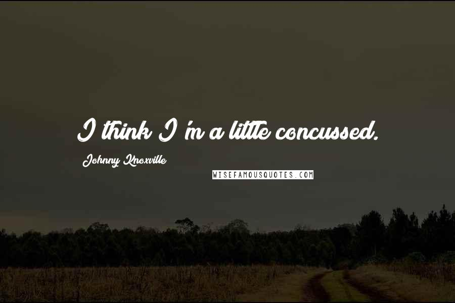 Johnny Knoxville quotes: I think I'm a little concussed.