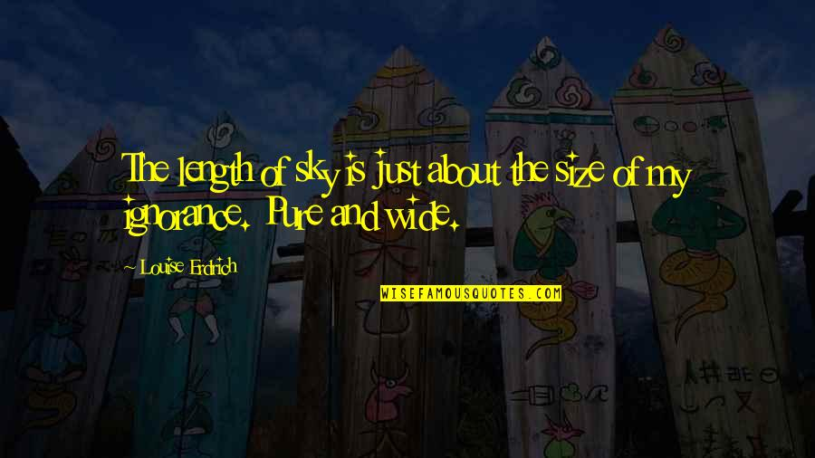 Jojo Quotes And Quotes By Louise Erdrich: The length of sky is just about the