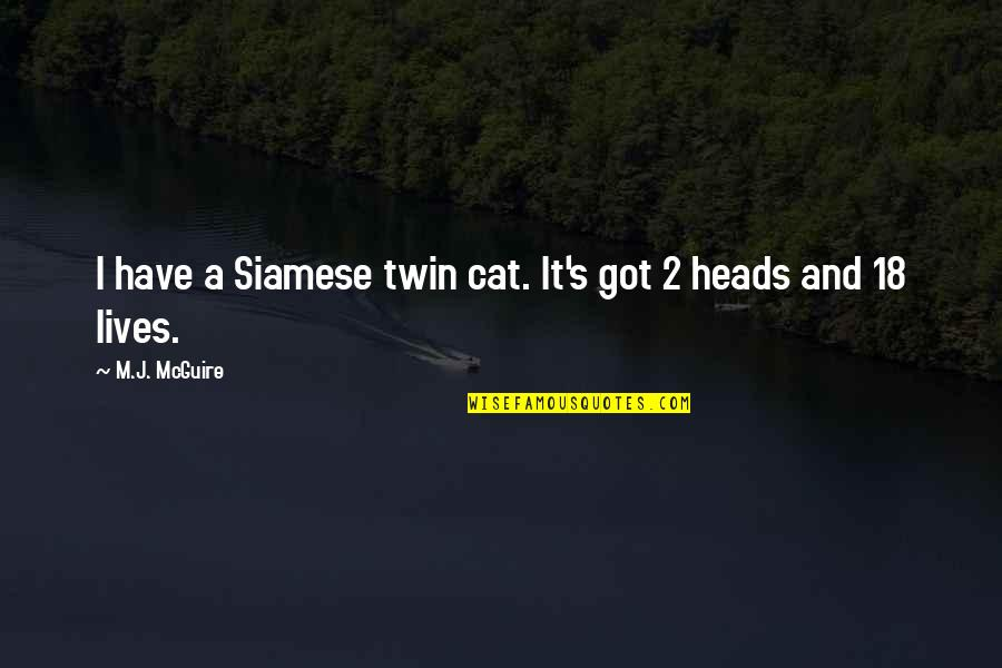 Jokes And Funny Quotes By M.J. McGuire: I have a Siamese twin cat. It's got