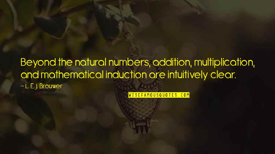 Jonas Valanciunas Quotes By L. E. J. Brouwer: Beyond the natural numbers, addition, multiplication, and mathematical