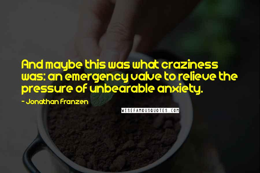 Jonathan Franzen quotes: And maybe this was what craziness was: an emergency valve to relieve the pressure of unbearable anxiety.