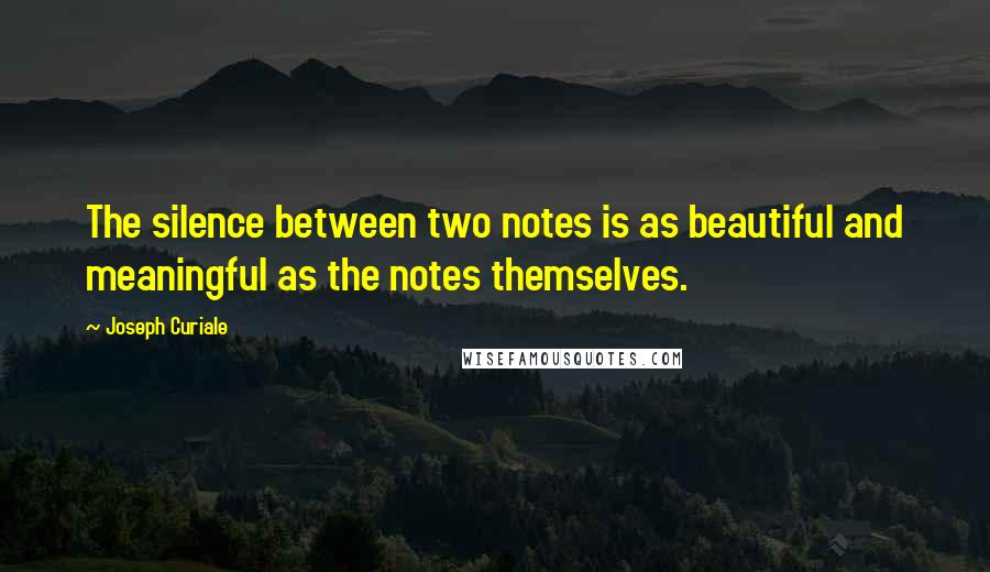 Joseph Curiale quotes: The silence between two notes is as beautiful and meaningful as the notes themselves.