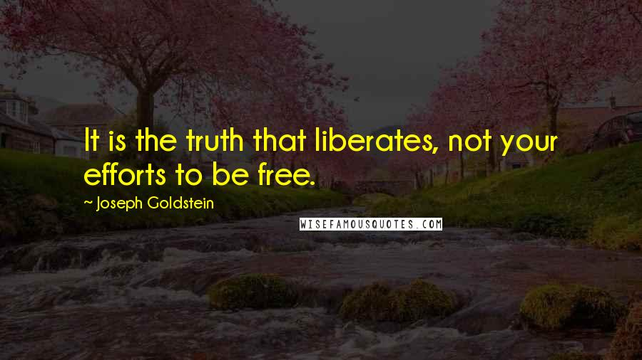 Joseph Goldstein quotes: It is the truth that liberates, not your efforts to be free.