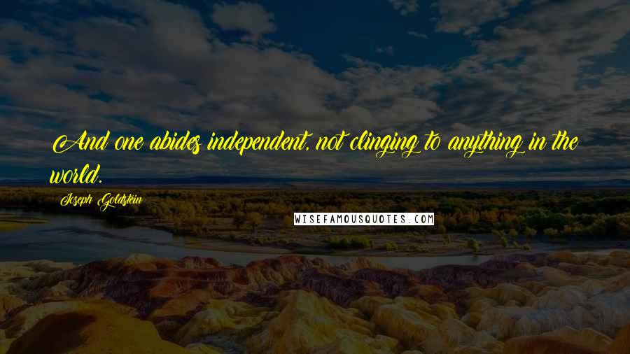 Joseph Goldstein quotes: And one abides independent, not clinging to anything in the world.
