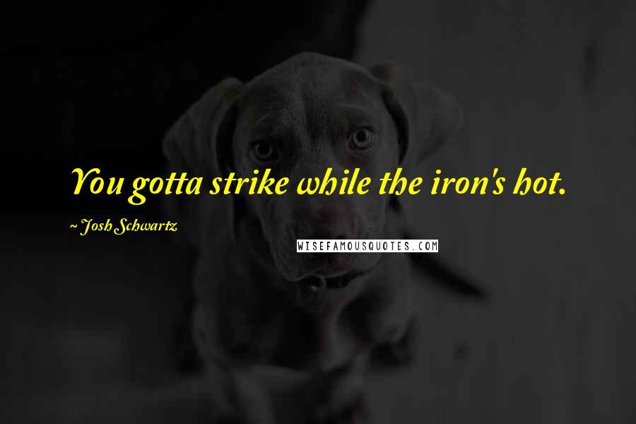 Josh Schwartz quotes: You gotta strike while the iron's hot.