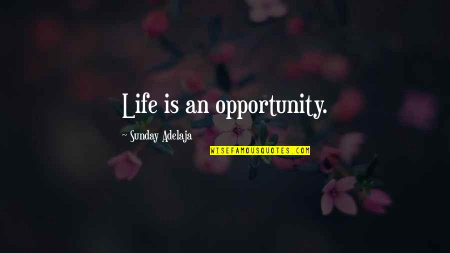 Journalism Fourth Estate Quotes By Sunday Adelaja: Life is an opportunity.