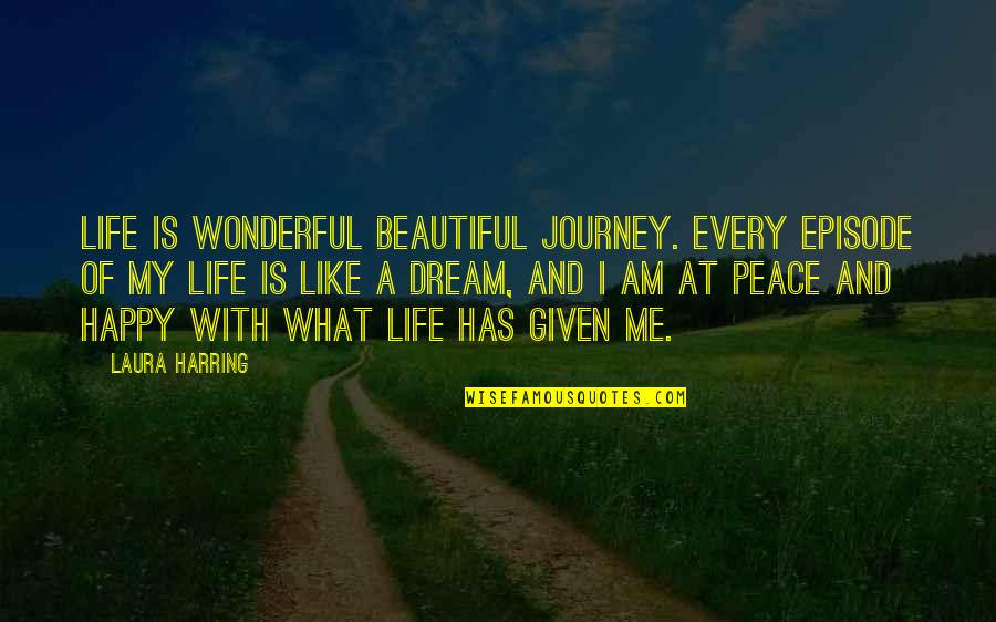 Journey And Dream Quotes By Laura Harring: Life is wonderful beautiful journey. Every episode of