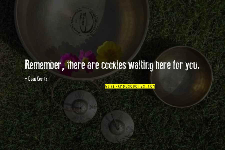Journey To Destination Quotes By Dean Koontz: Remember, there are cookies waiting here for you.
