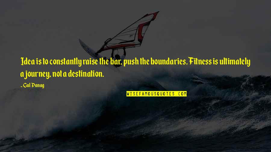 Journey To Destination Quotes By Gul Panag: Idea is to constantly raise the bar, push