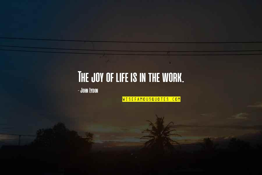 Joy In Work Quotes By John Lydon: The joy of life is in the work.