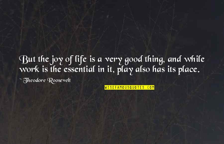 Joy In Work Quotes By Theodore Roosevelt: But the joy of life is a very