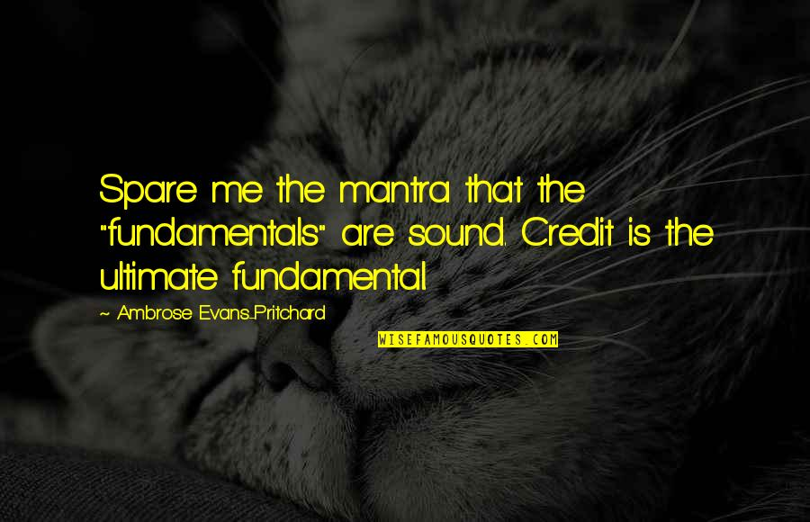 """Judge Yourself Not Others Quotes By Ambrose Evans-Pritchard: Spare me the mantra that the """"fundamentals"""" are"""