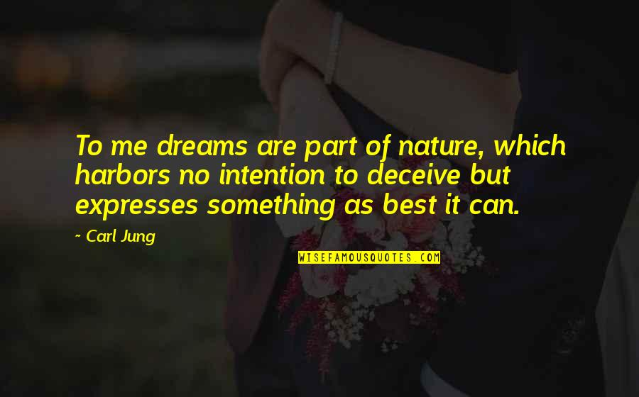 Judge Yourself Not Others Quotes By Carl Jung: To me dreams are part of nature, which