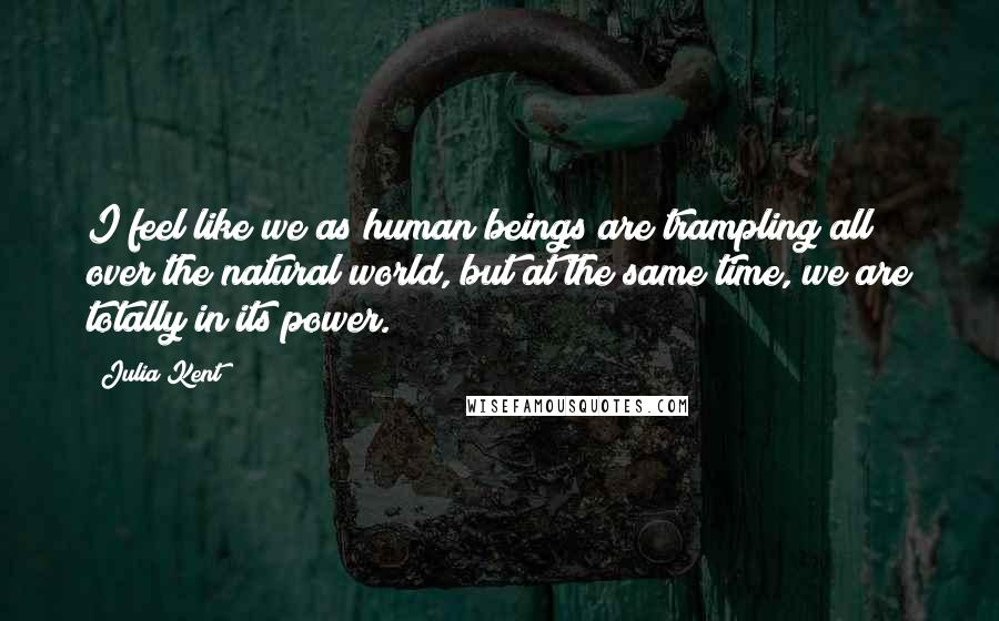 Julia Kent quotes: I feel like we as human beings are trampling all over the natural world, but at the same time, we are totally in its power.