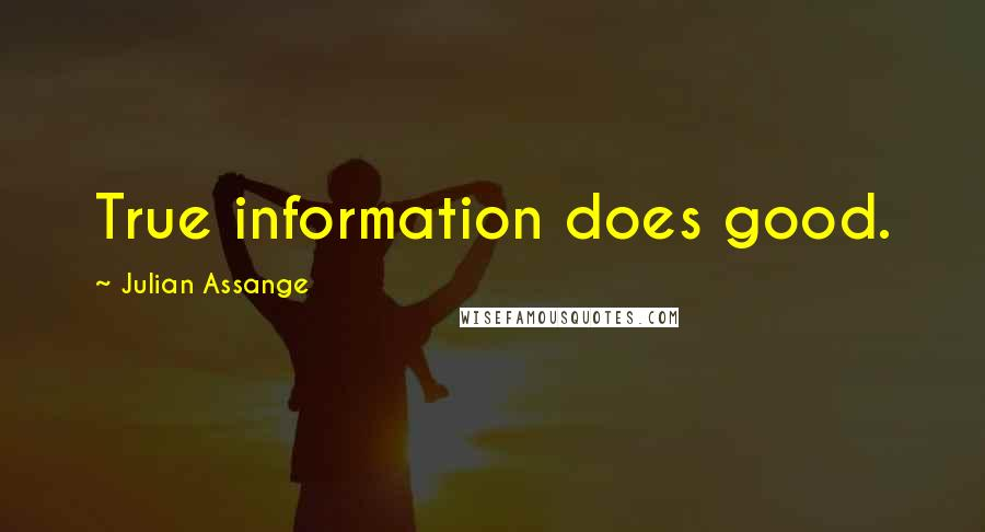 Julian Assange quotes: True information does good.