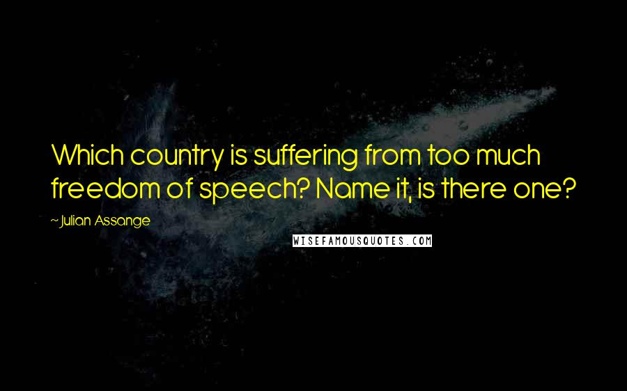 Julian Assange quotes: Which country is suffering from too much freedom of speech? Name it, is there one?