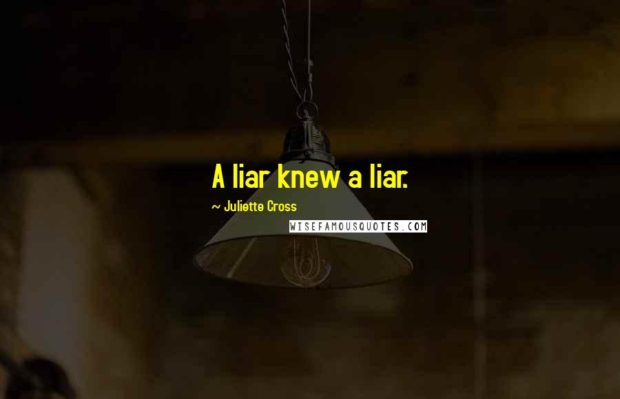 Juliette Cross quotes: A liar knew a liar.
