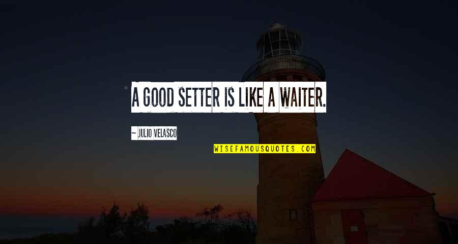 Julio Velasco Quotes By Julio Velasco: A good setter is like a waiter.