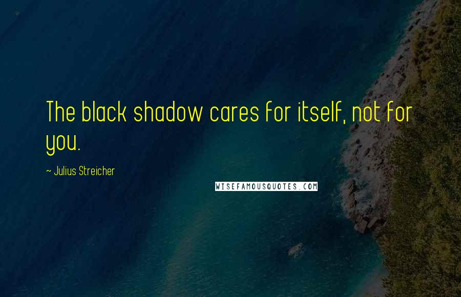 Julius Streicher quotes: The black shadow cares for itself, not for you.