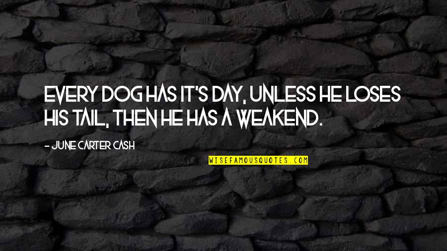 June's Quotes By June Carter Cash: Every dog has it's day, unless he loses