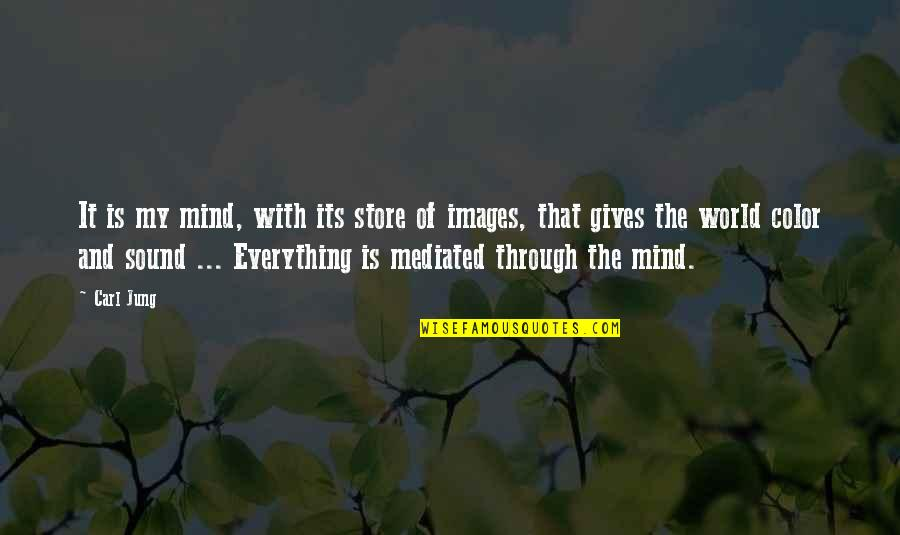 Jung Carl Quotes By Carl Jung: It is my mind, with its store of