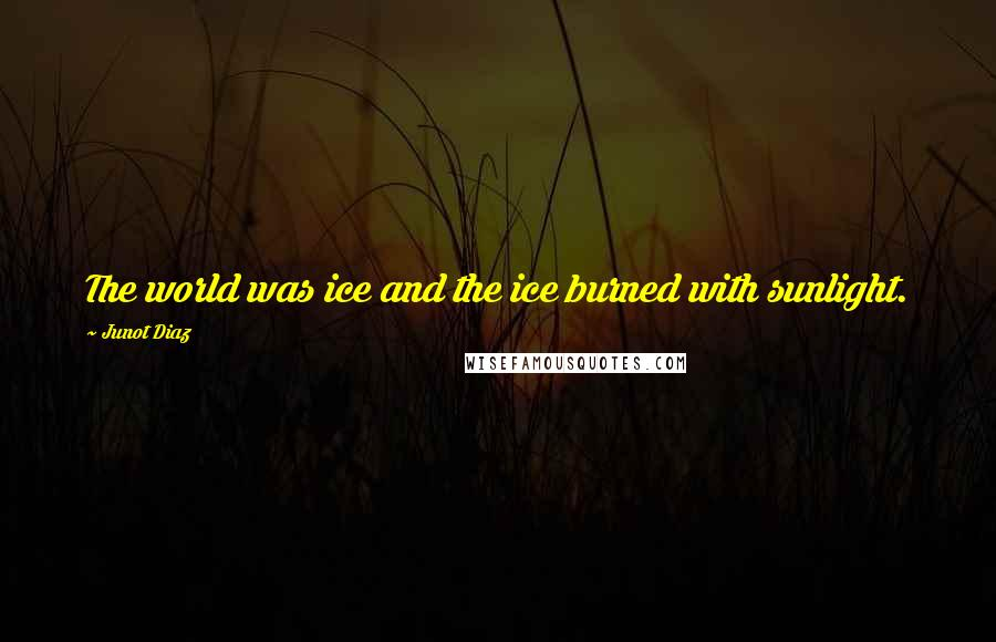 Junot Diaz quotes: The world was ice and the ice burned with sunlight.