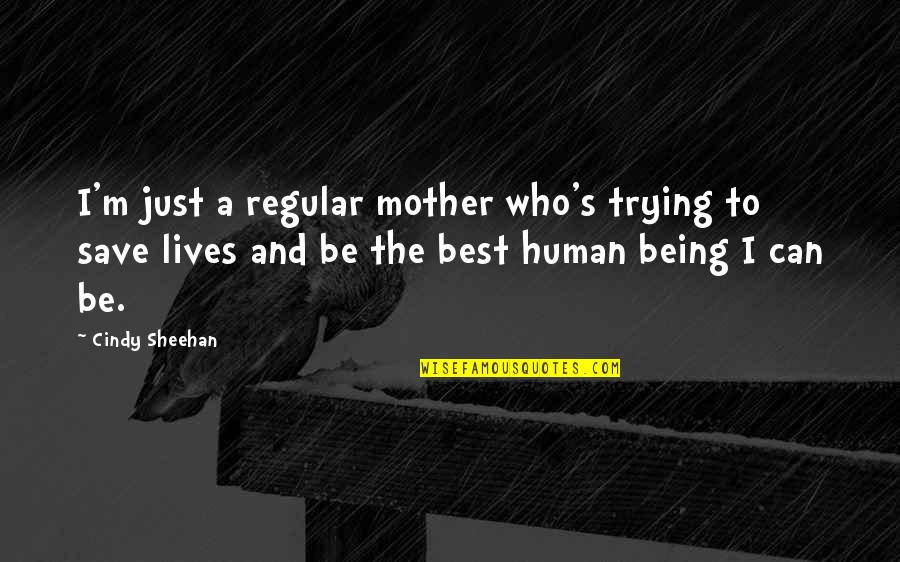 Just A Mother Quotes By Cindy Sheehan: I'm just a regular mother who's trying to