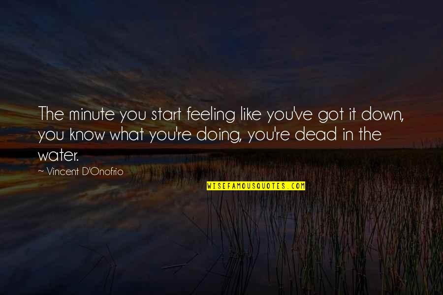 Just Feeling Down Quotes By Vincent D'Onofrio: The minute you start feeling like you've got