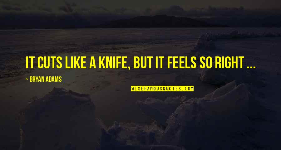 Just Feels Right Quotes By Bryan Adams: It cuts like a knife, but it feels