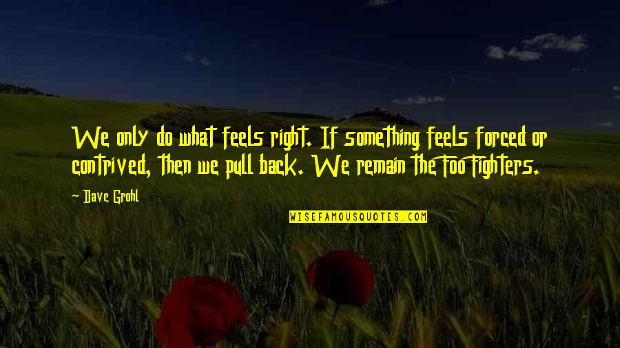 Just Feels Right Quotes By Dave Grohl: We only do what feels right. If something