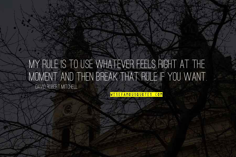 Just Feels Right Quotes By David Robert Mitchell: My rule is to use whatever feels right