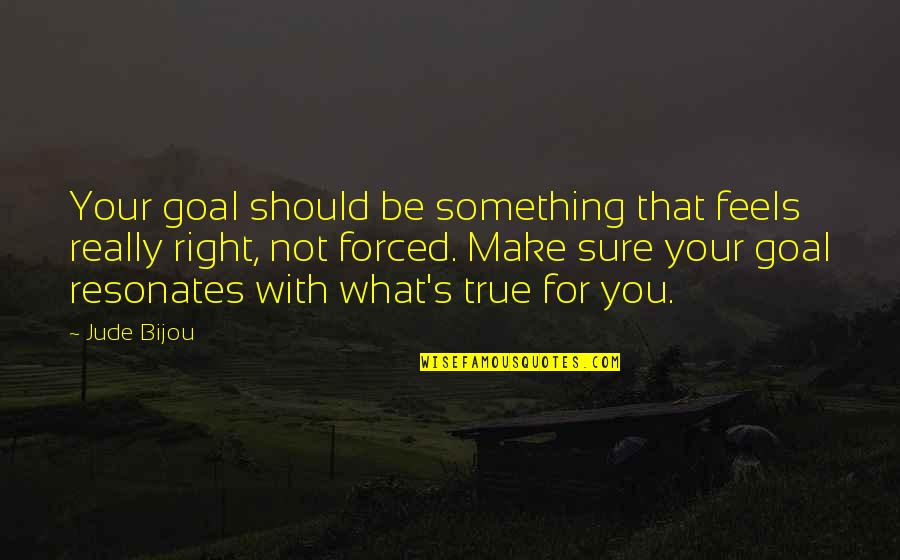 Just Feels Right Quotes By Jude Bijou: Your goal should be something that feels really