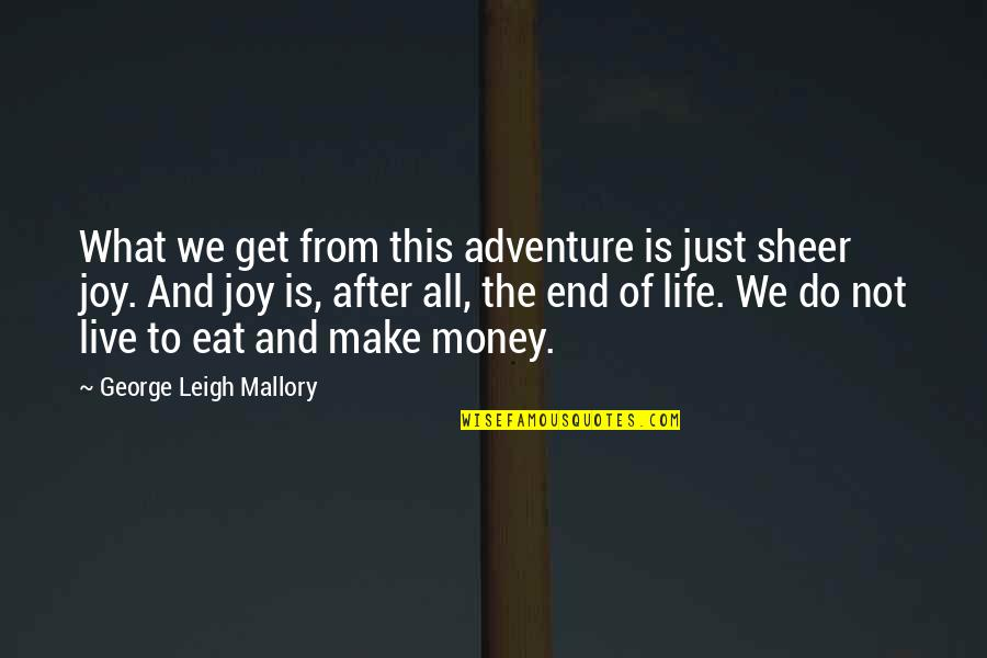 Just Get Money Quotes By George Leigh Mallory: What we get from this adventure is just
