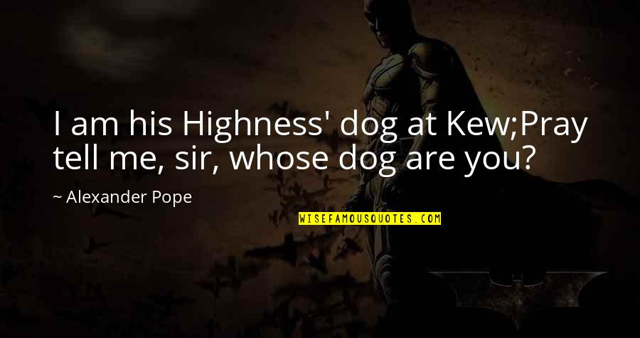 Just Me And My Dog Quotes By Alexander Pope: I am his Highness' dog at Kew;Pray tell